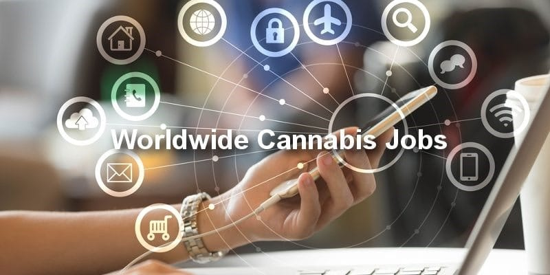 Online Cannabis Jobs