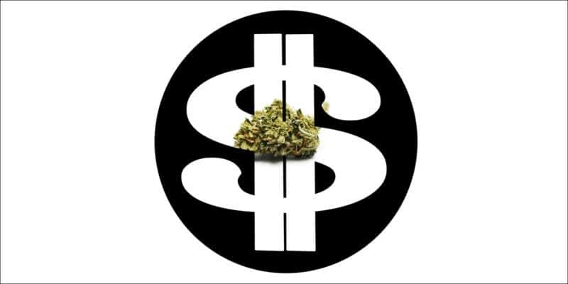 Cannabis Jobs to earn money
