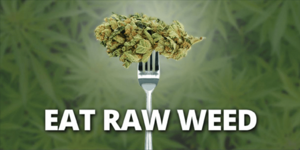 Eating Raw Weed