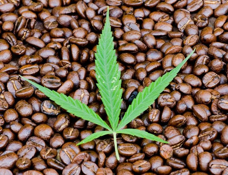 Cannabis Coffee: General Information And Recipes