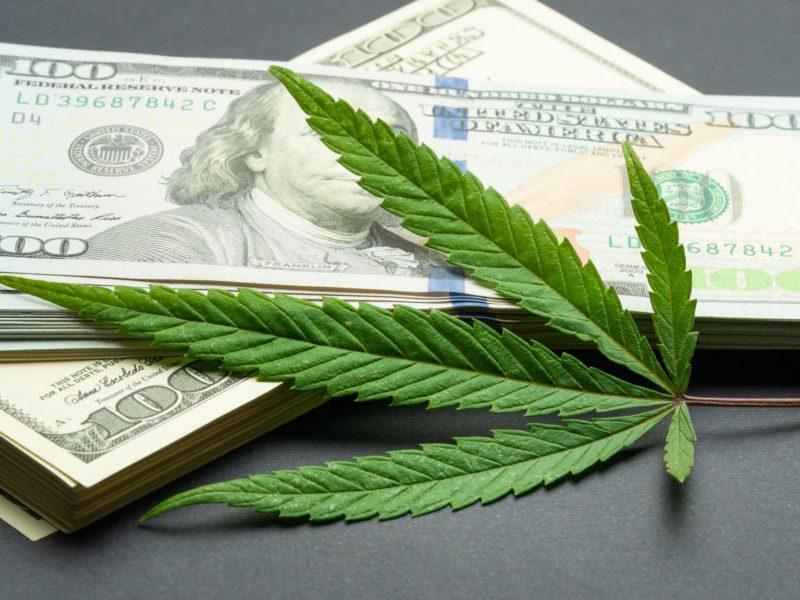 DEA Admits State-Level Marijuana Legalization Reduces Illegal Market Demand