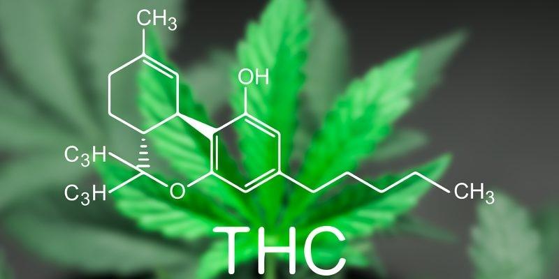 What Is THC (Tetrahydrocannabinol) ?