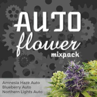 autoflower mixpack