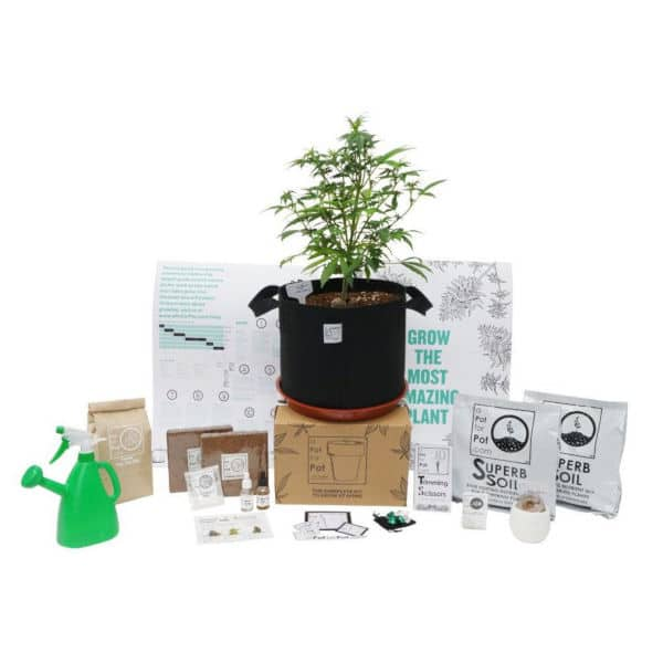 Cannabis Growing Kit All in One