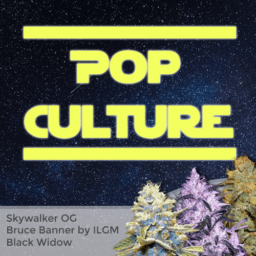 Pop Culture Mixpack