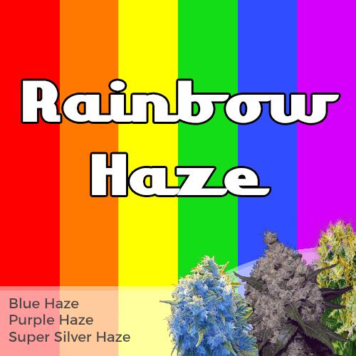Rainbow Haze Mixpack